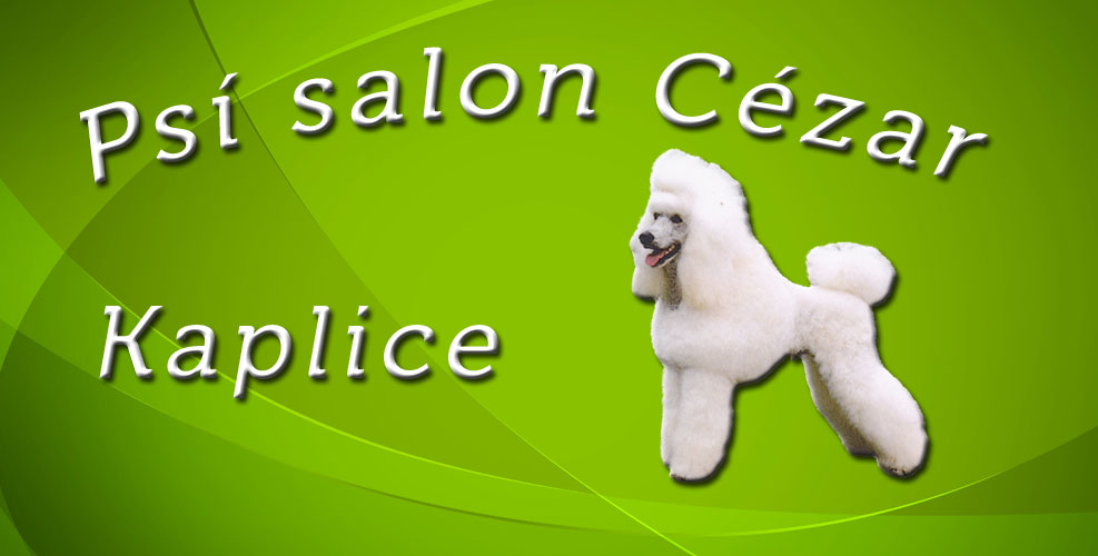 Psí salon CÉZAR